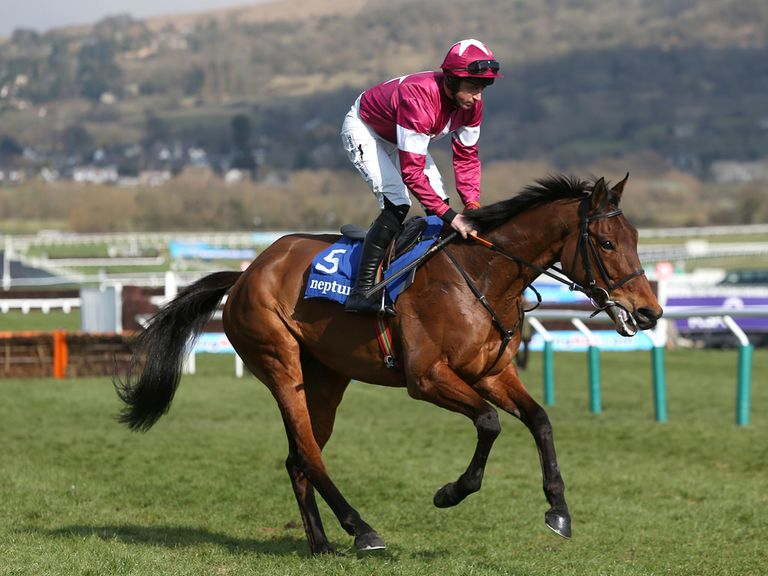 Rule The World: One of two Irish horses backed in the World Hurdle