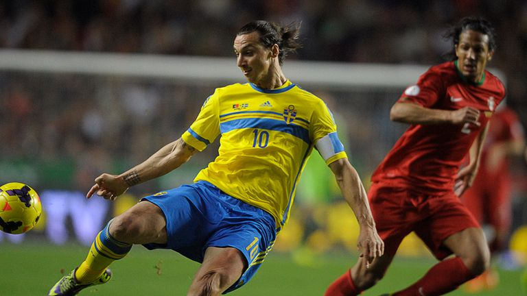Zlatan Ibrahimovic: Missed out on World Cup