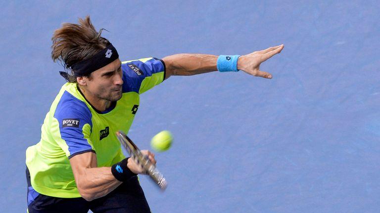David Ferrer: Spaniard will meet Novak Djokovic in Paris Masters final