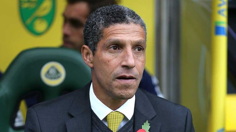 Chris Hughton: Norwich manager calls for patience