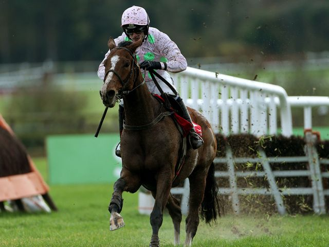 Faugheen: Still unbeaten after Limerick success