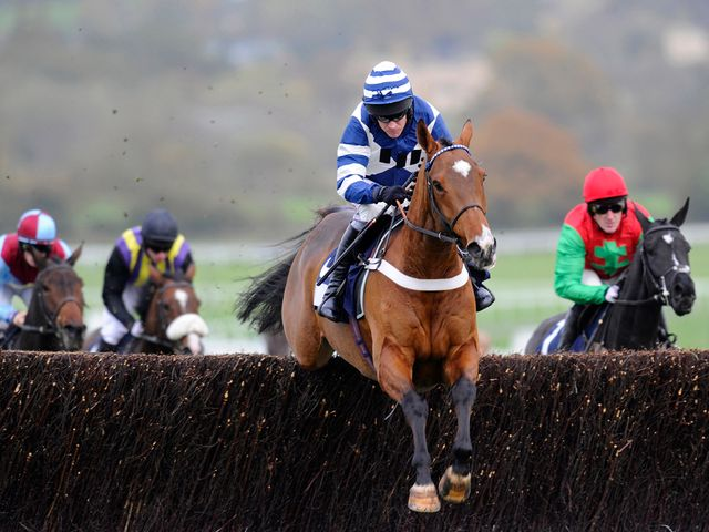Oscar Whisky: Returns to Cheltenham on Friday