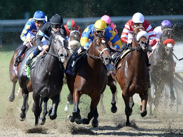 Mizdirection (left): Remarkable record at Santa Anita continues