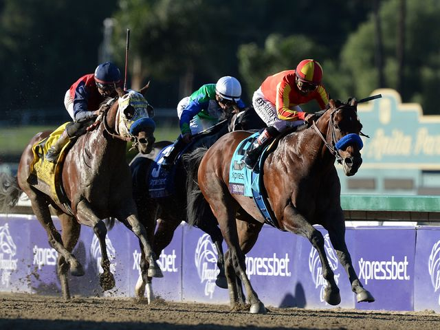 Secret Circle powers to victory in the Breeders' Cup Sprint
