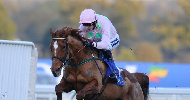 Annie Power: Christmas entry
