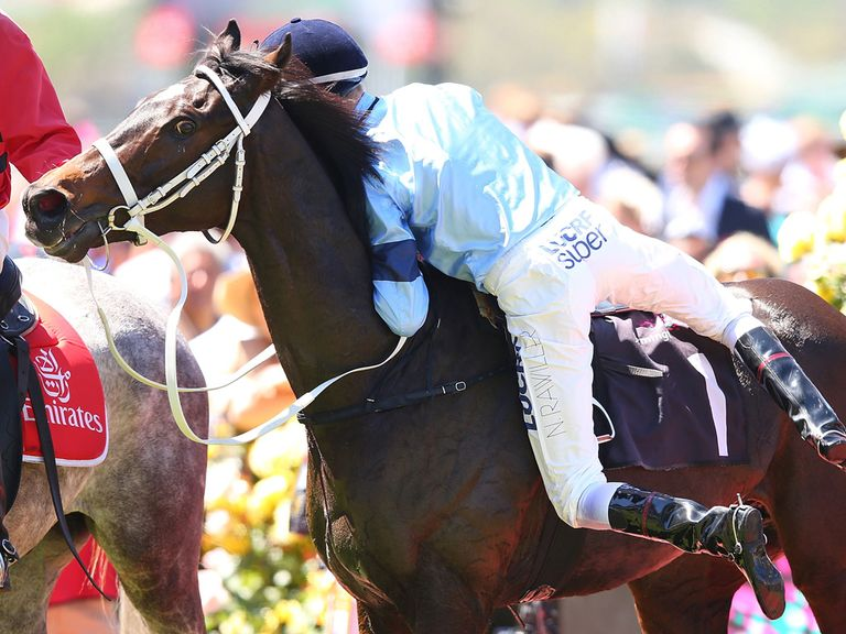 Nash Rawiller and Opinion on Melbourne Cup day