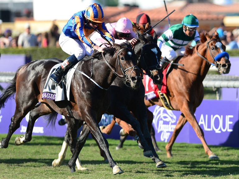 Magician: Can land the Prince of Wales's Stakes