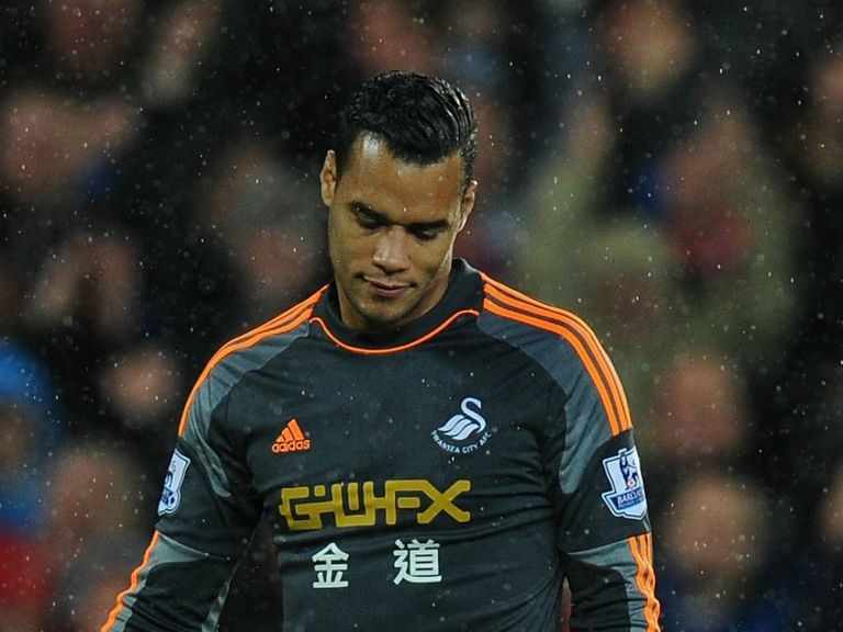 Michel Vorm: Needs knee surgery
