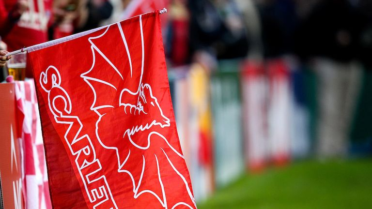 Scarlets coach Brad Harrington has been given a 12-week touchline ban