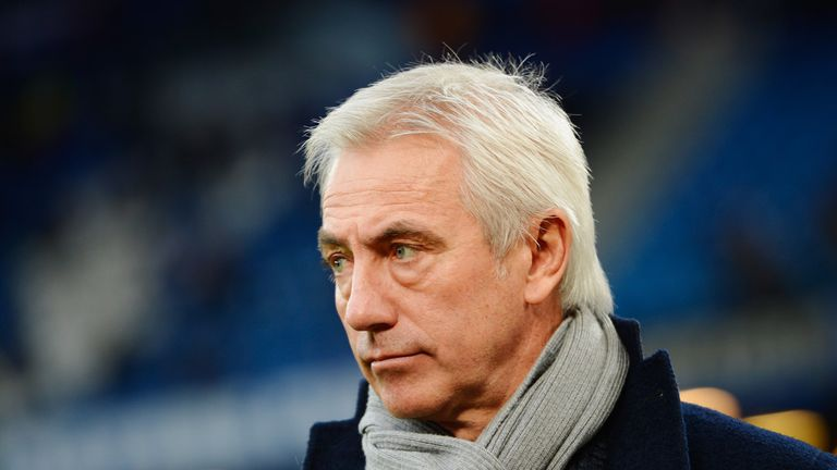 Bert van Marwijk: Lasted less than five months at Hamburg