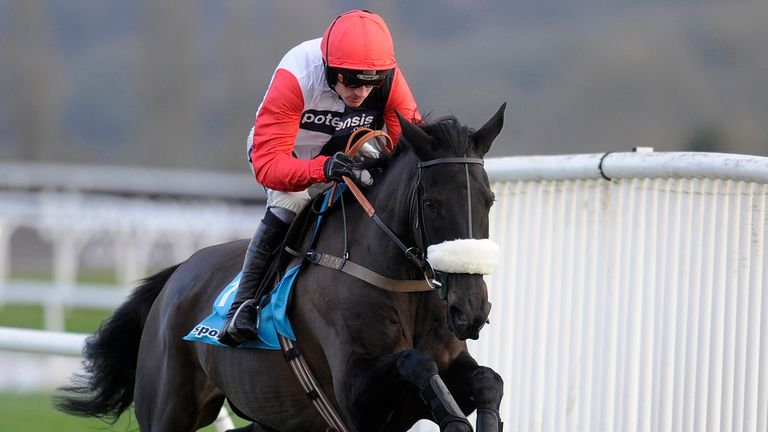 Big Buck's: D-day drawing nearer for the superstar hurdler