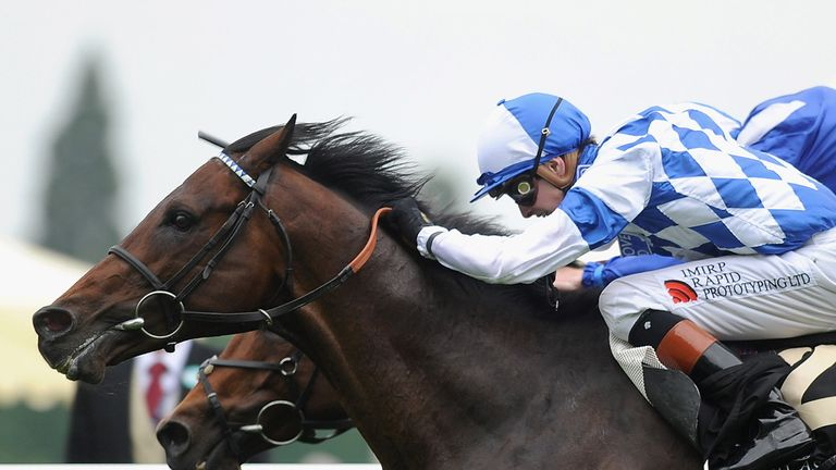 Al Kazeem: Could run at Listed level