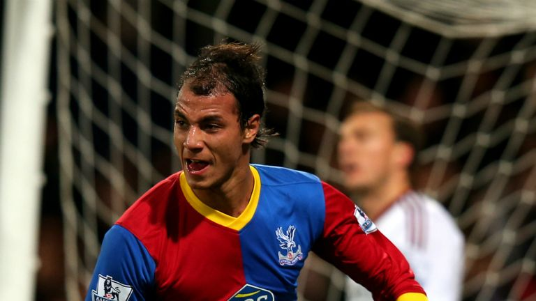 Marouane Chamakh: Has enjoyed a productive debut campaign at Selhurst Park