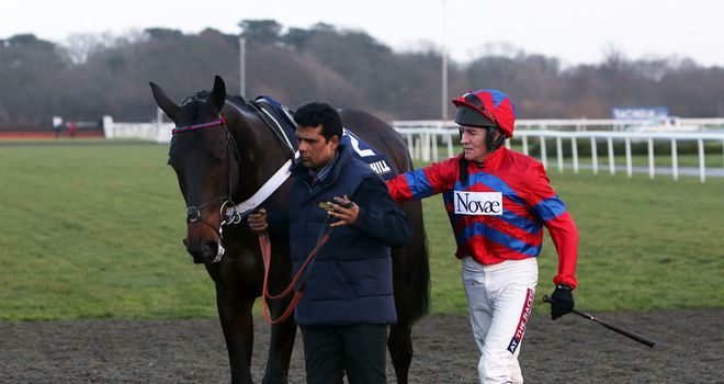 Sprinter Sacre is out of the Cheltenham Festival