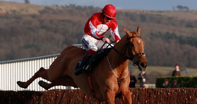Double Ross: In action at Cheltenham again
