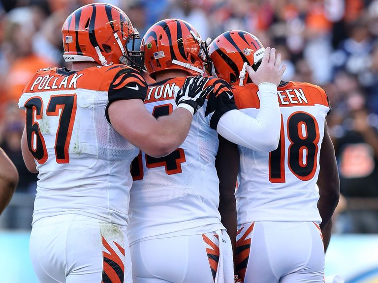 The Bengals celebrate A.J Green's touchdown