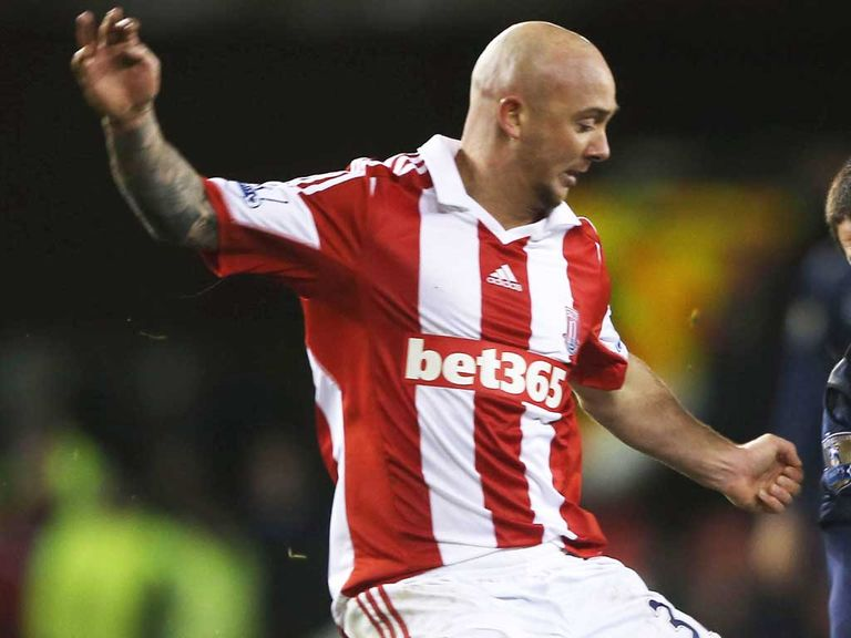Stephen Ireland: Set to make his Stoke stay permanent