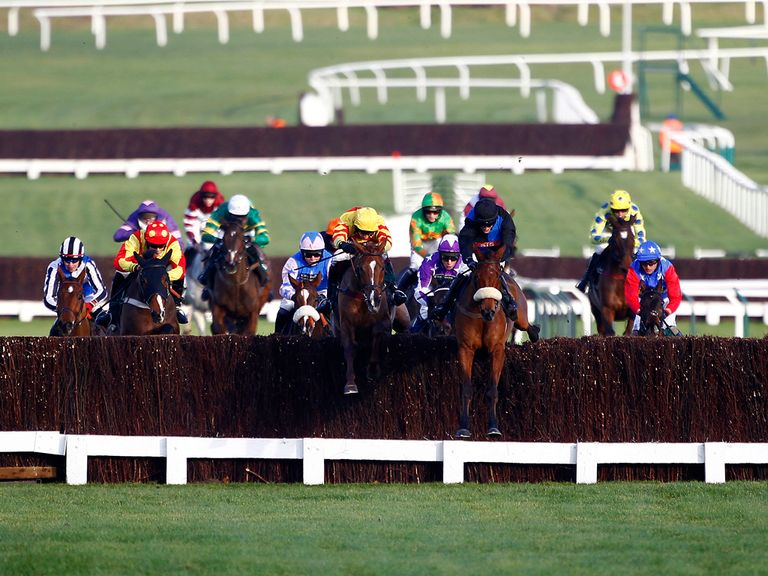 Friendly Society finished seventh behind King Massini at Cheltenham