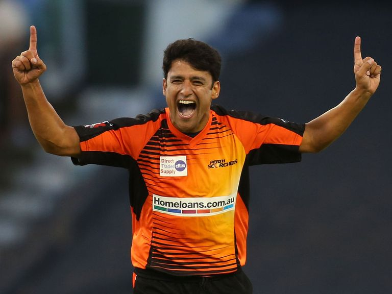 Yasir Arafat: Signs for Sussex