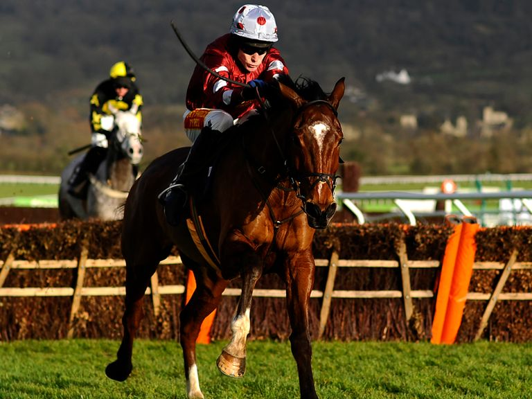Kings Palace: Likely to go straight to Cheltenham