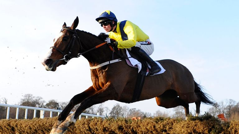 Our Conor: In top nick ahead of the Cheltenham Festival
