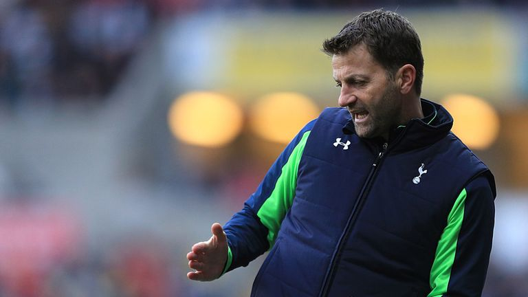 Tim Sherwood: Determined to steer Tottenham to a top-four finish