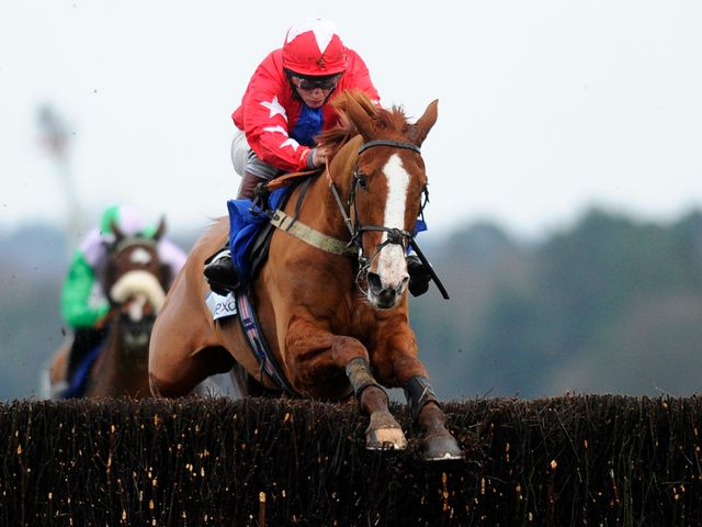 Sire De Grugy jumps to victory at Ascot
