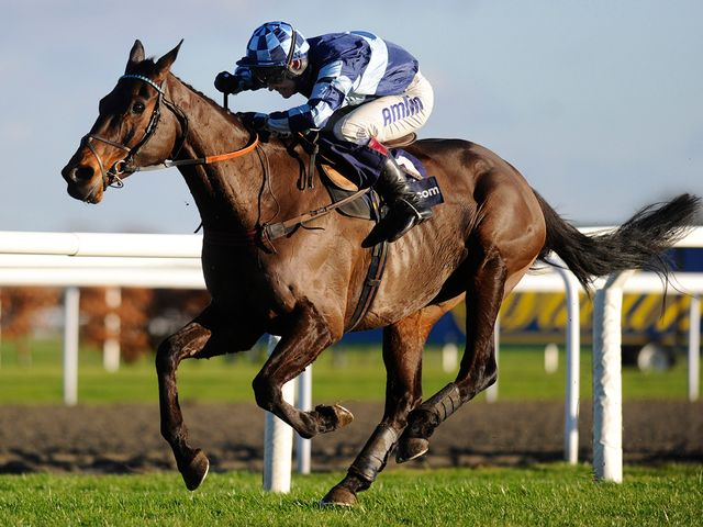 Captain Chris: Bloodless winner at Kempton