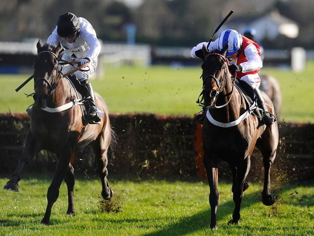 Royal Boy (left) and Josses Hill do battle in the Tolworth