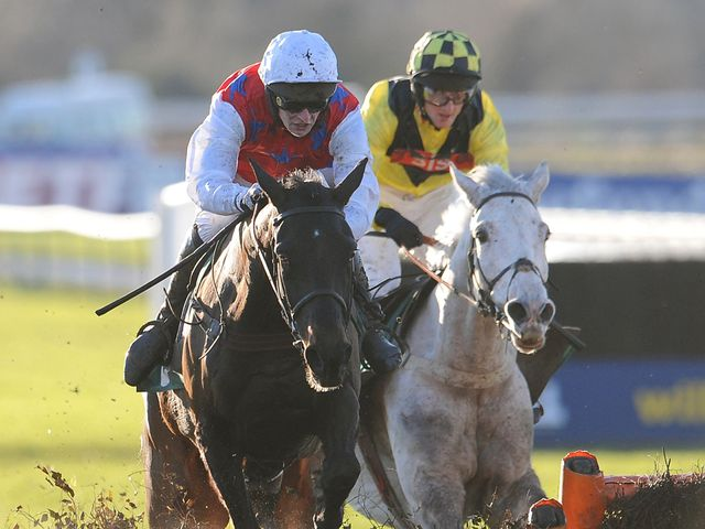 Grand Vision (right): Welsh Champion Hurdle hopeful