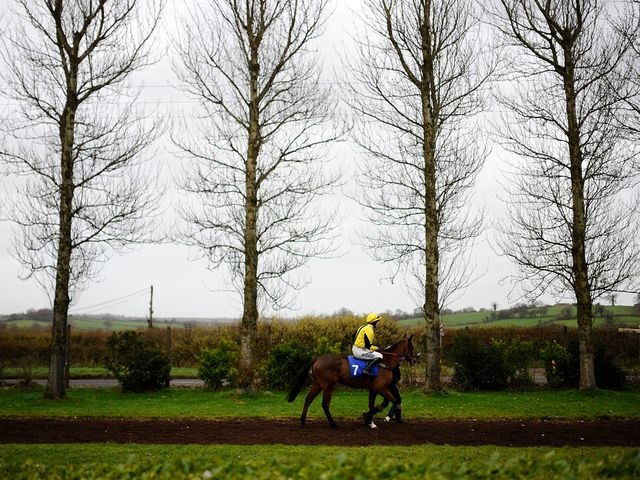 Wincanton: Race on Saturday