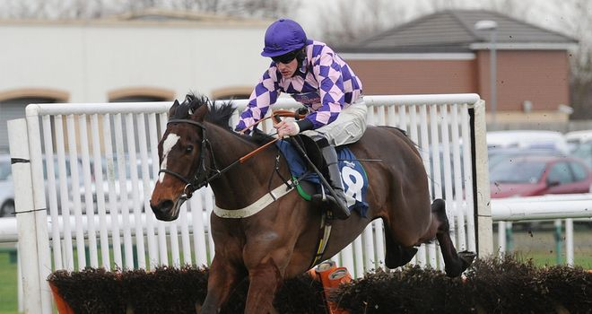 Pearl Castle: Set to go on trial for Cheltenham in the next fortnight