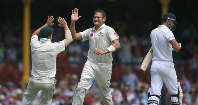 Ryan Harris: Australia seamer celebrates the wicket of Kevin Pietersen