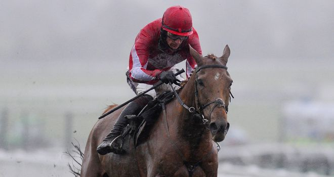 Double Ross: Set for Cheltenham