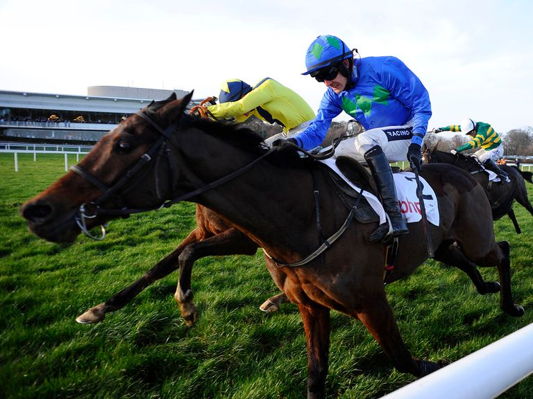Hurricane Fly: Will be hard to beat around Punchestown
