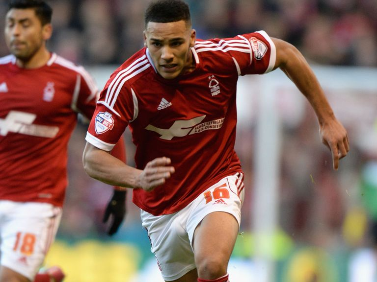 Jamaal Lascelles: Has been linked with a Premier League move for some time