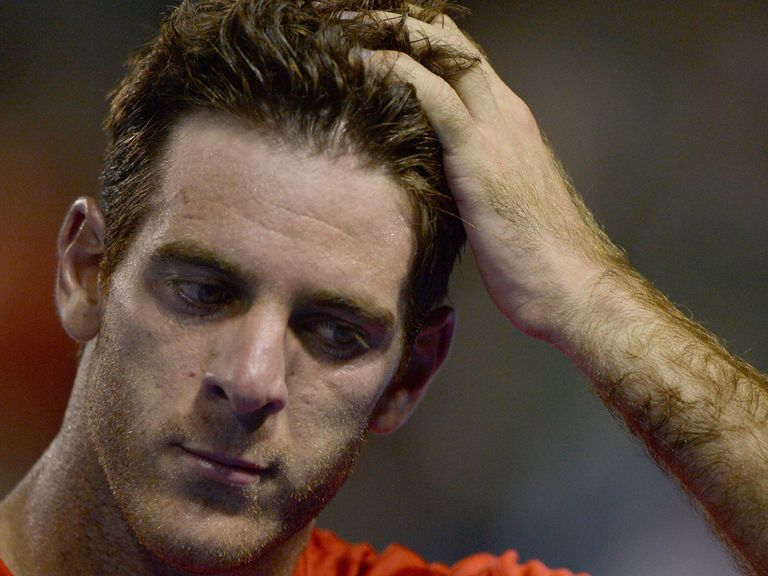 Juan Martin del Potro: Dumped out in the second round