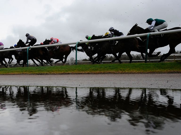 Lingfield: Scene of a Brave punt
