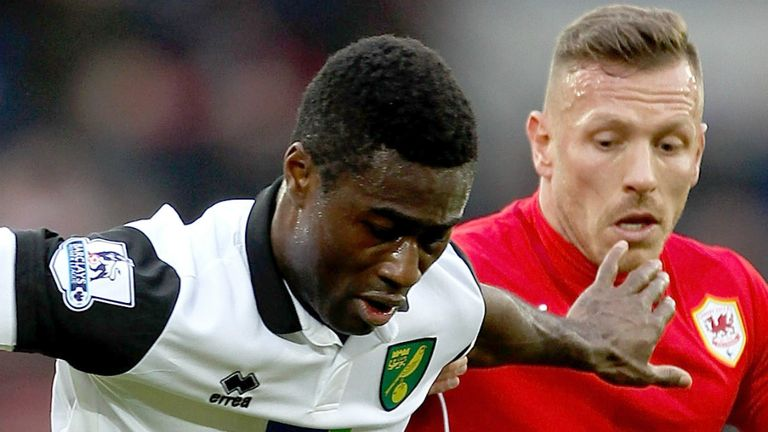 Alex Tettey: Frustrated by Norwich's lack of goals