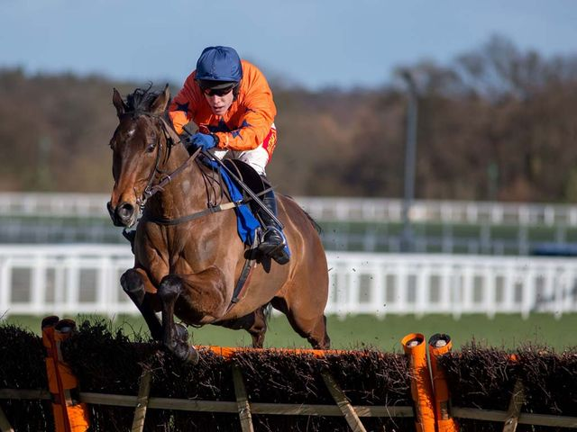 Un Temps Pour Tout takes the final flight clear at Ascot