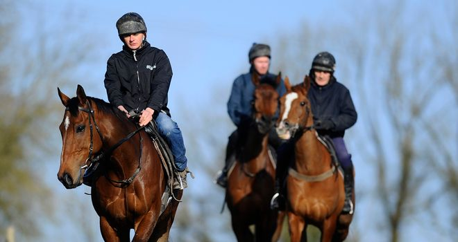 The New One heads the Nigel Twiston-Davies team at exercise