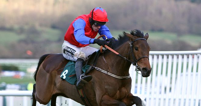 Quevega: Heads list for OLBG Mares' Hurdle