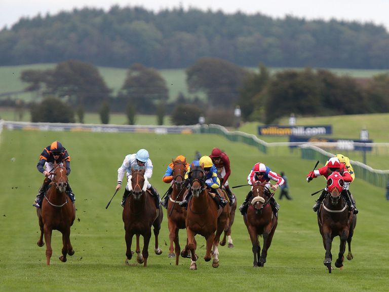 Racing at Ayr will go ahead on Thursday