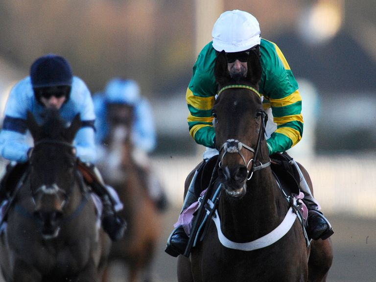 My Tent Or Yours: Proving popular in the Champion Hurdle
