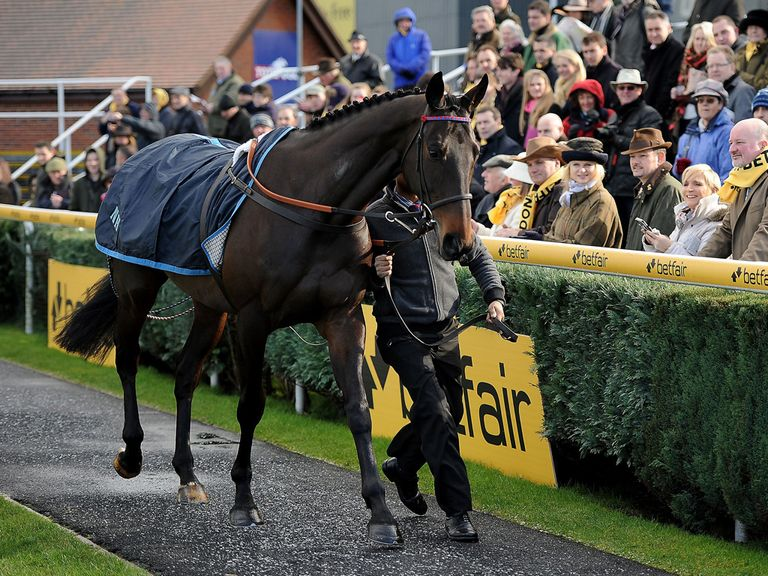 Sprinter Sacre: Out of Cheltenham