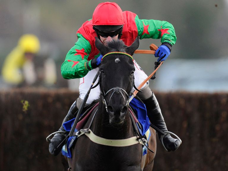 Balder Succes: Heads now to Aintree and Punchestown