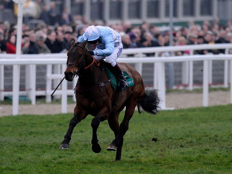 Cheltenian: Can take the Betfair Hurdle