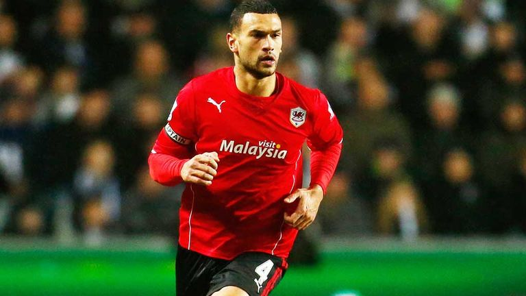 Steven Caulker: Believes Cardiff must show greater fight to stay in the Premier League