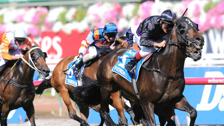 Fiorente: Could return to Royal Ascot