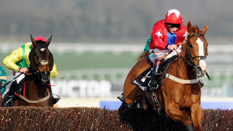 Sire De Grugy: Could head to Sandown